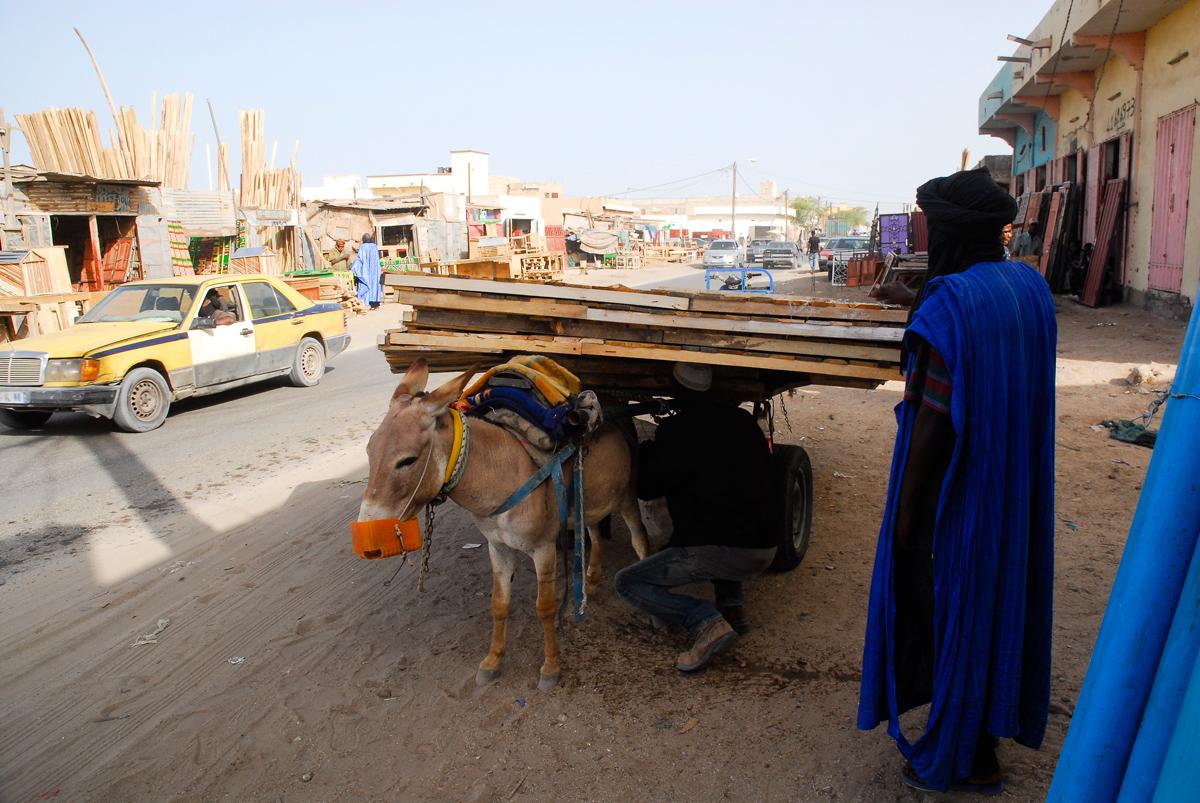 Burro de carga em Nouakchott